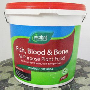 fish-blood+bone